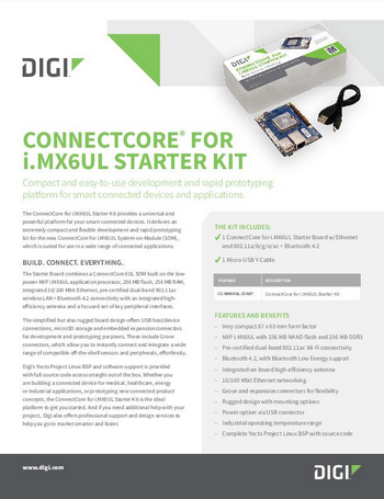 ConnectCore&#174 Flayer